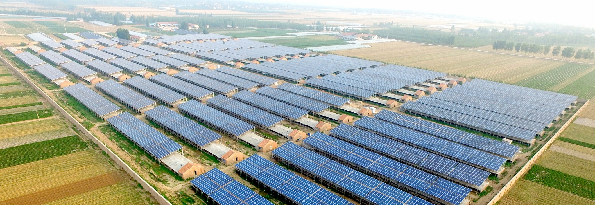 Clenergy Ground-mount 40MW Agrivoltaic Project in China